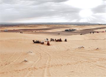 Batı Sahra'dan Çöl Manzarası