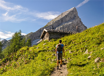 Waltzman Dağı'nda Hiking
