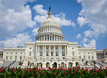 ABD Kongre Binası - Capitol