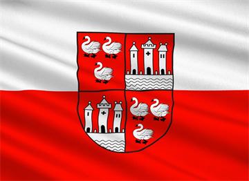 Zwickau Şehir Bayrağı